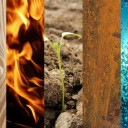 five-elements-379106_1280